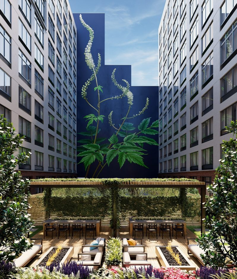 Clinton Hill & Fort Green Brooklyn Apartments Leasing Now